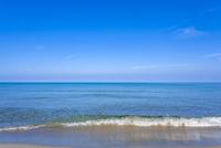 打ち寄せる波と水平線