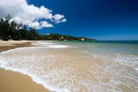 月ヶ浜 28142005382| 写真素材・ストックフォト・画像・イラスト素材|アマナイメージズ