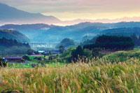 朝の蒜山高原 28142013606| 写真素材・ストックフォト・画像・イラスト素材|アマナイメージズ