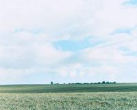 田園風景 30002000217| 写真素材・ストックフォト・画像・イラスト素材|アマナイメージズ