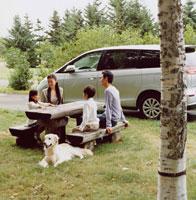 公園のベンチで語らう日本人家族と犬