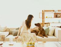 ソファに座る犬と女性 30006001715| 写真素材・ストックフォト・画像・イラスト素材|アマナイメージズ