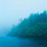 湖畔の森 30006001770| 写真素材・ストックフォト・画像・イラスト素材|アマナイメージズ
