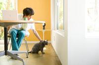 パソコンをしている日本人男性の足下の猫 30006002109| 写真素材・ストックフォト・画像・イラスト素材|アマナイメージズ