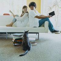 本を読む日本人男性と女性と猫 30006002166| 写真素材・ストックフォト・画像・イラスト素材|アマナイメージズ
