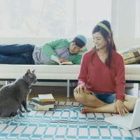 パソコンをする日本人女性と本を読む男性と猫 30006002168| 写真素材・ストックフォト・画像・イラスト素材|アマナイメージズ