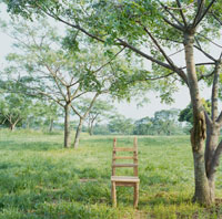 草原に置かれた椅子