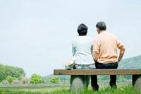 新緑の中でベンチに座り寛ぐシニア夫婦の後姿