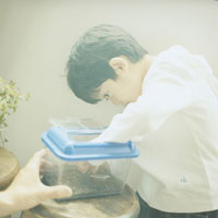 虫篭から虫を出す日本人の男の子 30010000240| 写真素材・ストックフォト・画像・イラスト素材|アマナイメージズ