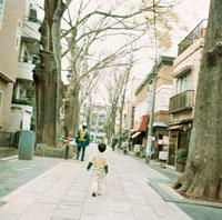 道を歩く男の子の後姿と巨木