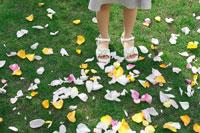花びらの中に立つ日本人の女の子の足元