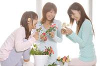 バラを活ける日本人20代女性3人