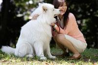 公園にいる大型犬と20代女性