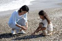 浜辺で貝殻を拾う親子