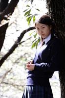 木に寄りかかる制服姿の女子高生
