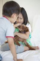 犬を抱っこする女の子と男の子 30018001703| 写真素材・ストックフォト・画像・イラスト素材|アマナイメージズ