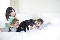 犬とくつろぐ女の子と男の子