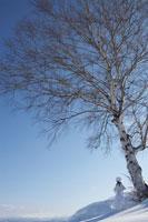 雪の中の一本の木のそばに佇む日本人女性