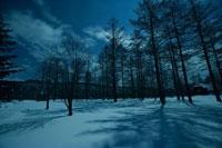 北海道の雪景色