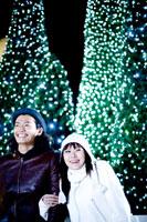 クリスマスツリーと男女
