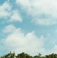 空と雲と木 30033000017| 写真素材・ストックフォト・画像・イラスト素材|アマナイメージズ