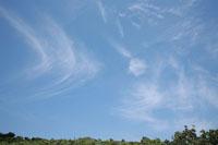 木々と空 30033000034| 写真素材・ストックフォト・画像・イラスト素材|アマナイメージズ