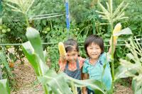 家庭菜園の中でトウモロコシを持って笑う子供達
