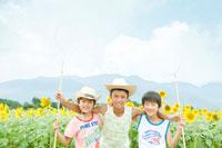虫取り網を持った少年達とひまわり畑