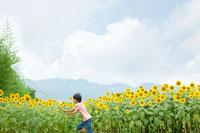 虫取り網を持ってひまわり畑を走る少年 30034000271| 写真素材・ストックフォト・画像・イラスト素材|アマナイメージズ