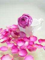 カップに入ったイブピアッチェの花と花びら