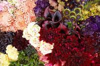 木の箱に飾られた花々