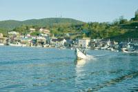 ウニ漁に出かける漁師 30037000056| 写真素材・ストックフォト・画像・イラスト素材|アマナイメージズ