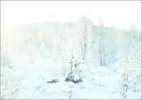 雪の積もった風景 31005000006| 写真素材・ストックフォト・画像・イラスト素材|アマナイメージズ