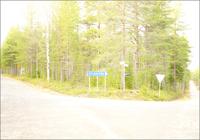 道と道路標識と樹木 31005000014| 写真素材・ストックフォト・画像・イラスト素材|アマナイメージズ