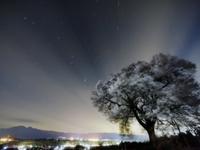 星空と桜 32052000024| 写真素材・ストックフォト・画像・イラスト素材|アマナイメージズ
