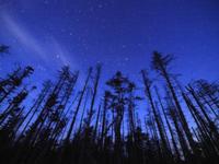 薄明の星空 32052000055| 写真素材・ストックフォト・画像・イラスト素材|アマナイメージズ