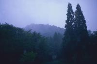雨の降るまでの空の定点 5/5 (雨が降り出した)