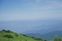 夏のアキアカネ 伊吹山頂を群れ飛ぶアキアカネ
