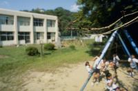 小学校の庭で ナツアカネ