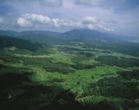 空撮 夏の里山
