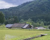 春の水田と旧家