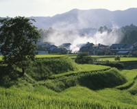 夏の棚田と里山