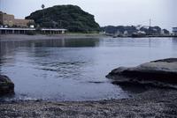 潮の満干きの様子 連続4 18:25 クサフグ 産卵中