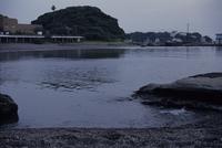 潮の満干きの様子 連続5 19:01 クサフグ 産卵が終わり
