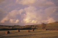 虹と牧場 32118000187  写真素材・ストックフォト・画像・イラスト素材 アマナイメージズ