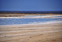 ウォルビスベイの塩田に引き込まれた海水が蒸発し塩が残る