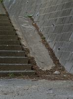 オカダンゴムシの生息地 32190000409| 写真素材・ストックフォト・画像・イラスト素材|アマナイメージズ
