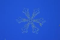 雪の結晶(扇形付六花)