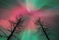 オーロラ:オーロラ嵐の始まりに見える赤い光環 32236001756| 写真素材・ストックフォト・画像・イラスト素材|アマナイメージズ