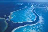 グレートバリアリーフ:深い溝で隔てられたサンゴ礁